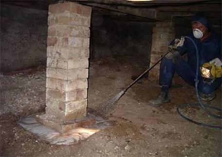 termite control companies Perth